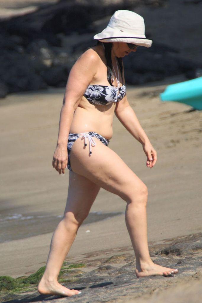 Fran Drescher bikini pics
