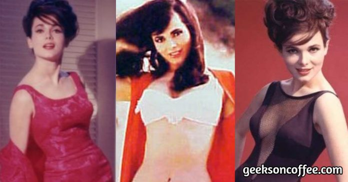 51 Hottest Gila Golan Pictures Can Make You Fall For Her Glamorous Looks