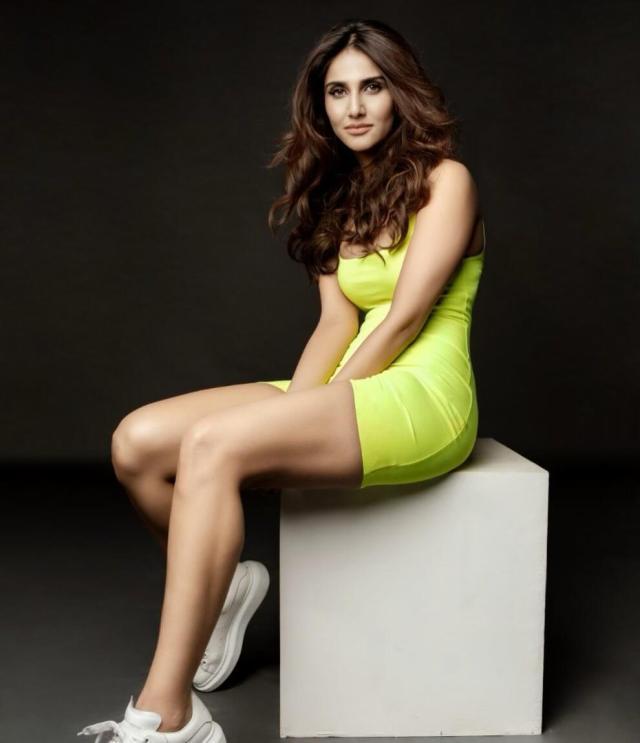 Vaani Kapoor thigh pics