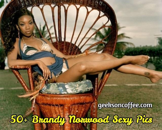 Brandy Norwood Sexy Pics